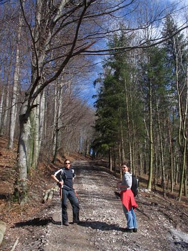 Foto: Lenswork.at / Ch. Streili / Wander Tour / Vorderfager  - Rauchenbichlalm - Gaisberg / 23.04.2007 23:03:52