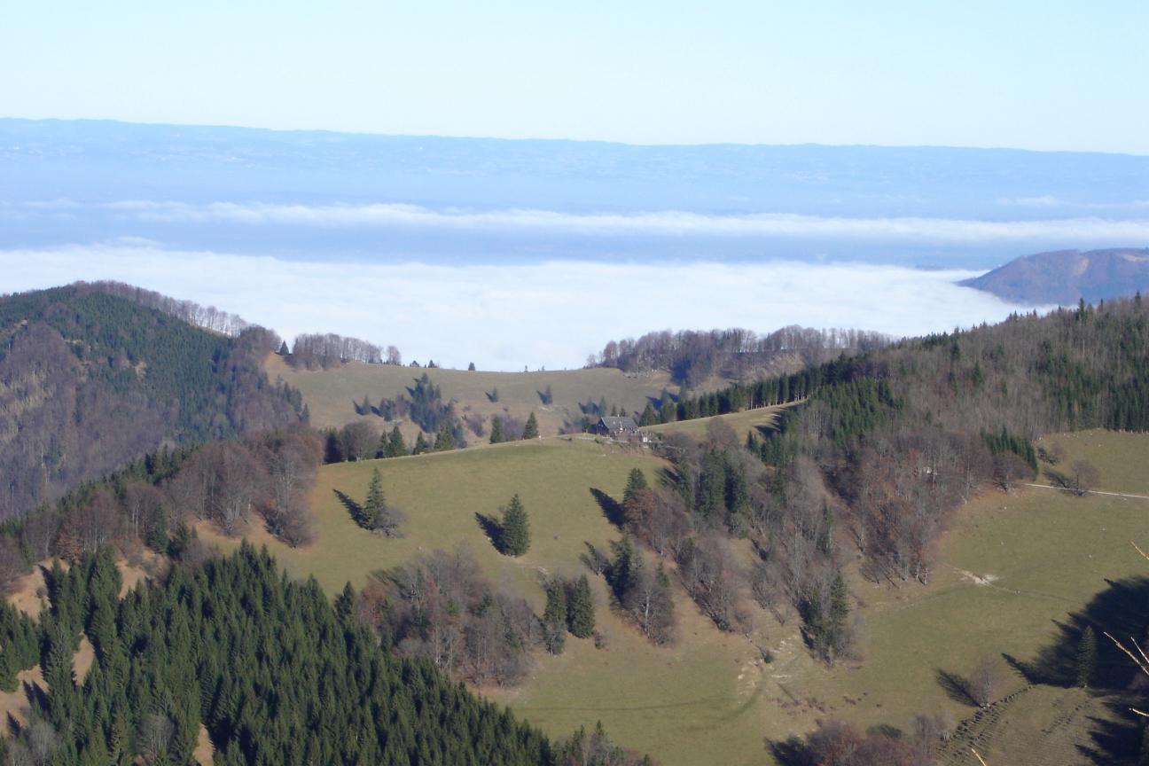Foto: Werner / Wander Tour / Über die Mollnerhütte auf das Dürre Eck / Vom Gipfel sieht man über die Grünburger Hütte und das Alpenvorland bis ins Mühlviertel / 02.01.2007 20:40:29
