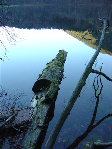 Foto: Jogal / Wander Tour / Rund um den Traunstein / 19.04.2007 19:26:11
