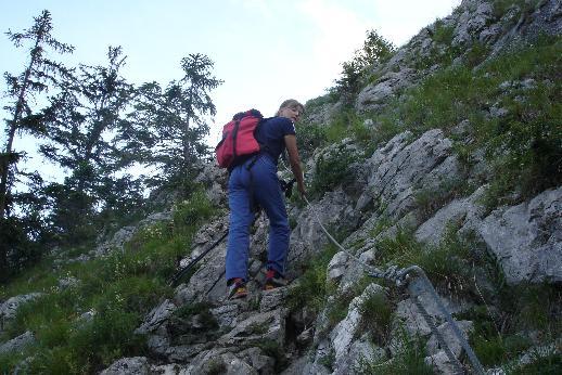 Foto: Werner / Wander Tour / Über den Hans-Hernler-Steig auf den Traunstein, über den Naturfreundesteig herunter / Naturfreundesteig / 02.01.2007 20:21:33
