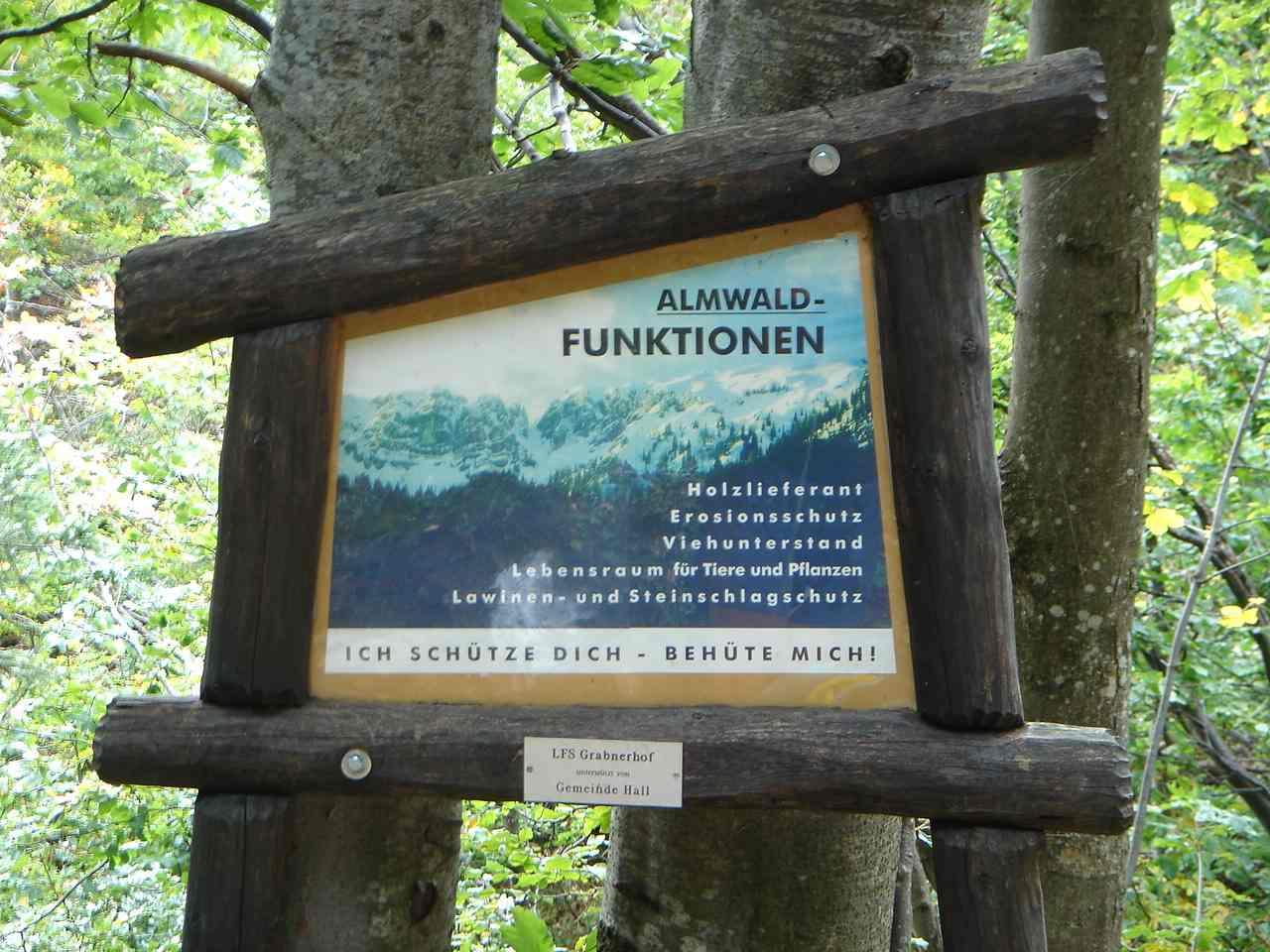 Foto: Manfred Karl / Wander Tour / Grabnerstein - Gipfelrunde / Schautafeln am Weg zum Grabneralmhaus. / 18.05.2007 14:46:58