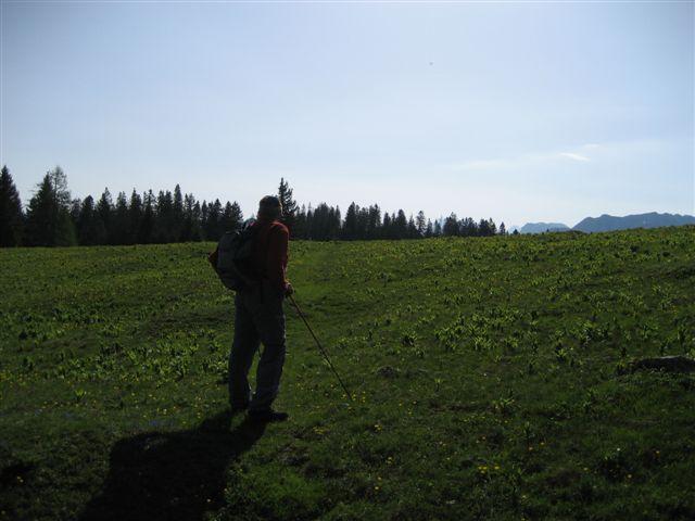 Foto: Jogal / Wander Tour / Überschreitung der Hohen Schrott / Brombergalm / 22.05.2007 06:02:21