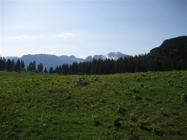Foto: Jogal / Wander Tour / Überschreitung der Hohen Schrott / Brombergalm / 22.05.2007 06:02:42