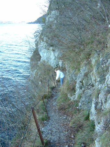 Foto: Jogal / Wander Tour / Miesweg am O-Ufer des Traunsees, 480m / 19.04.2007 06:31:24