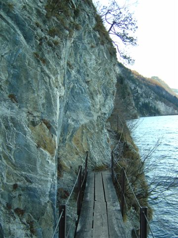 Foto: Jogal / Wander Tour / Miesweg am O-Ufer des Traunsees, 480m / 19.04.2007 06:31:51