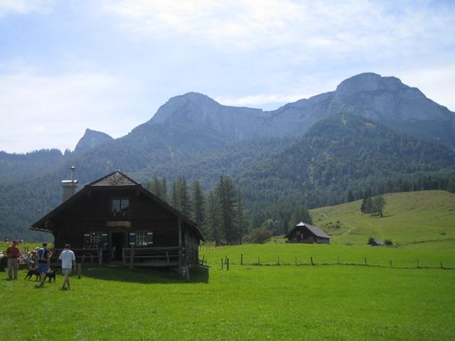 Foto: Salzprinz / Wander Tour / Durch die Burggrabenklamm auf die Eisenauer Alm, 1015m / Auf der Eisenaualm, Blick Ri. Schafberg / 08.01.2007 23:45:35