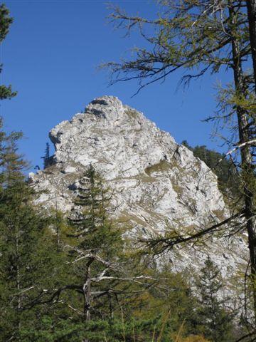Foto: Alpinfreunde / Wandertour / Schoberstein, 1037m / 17.01.2007 01:20:07