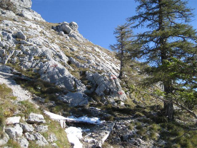 Foto: Alpinfreunde / Wandertour / Schoberstein, 1037m / 17.01.2007 01:20:32