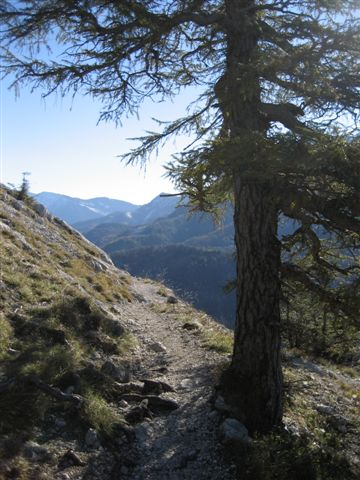 Foto: Alpinfreunde / Wandertour / Schoberstein, 1037m / 17.01.2007 01:20:41
