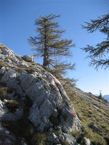 Foto: Alpinfreunde / Wandertour / Schoberstein, 1037m / 17.01.2007 01:20:50