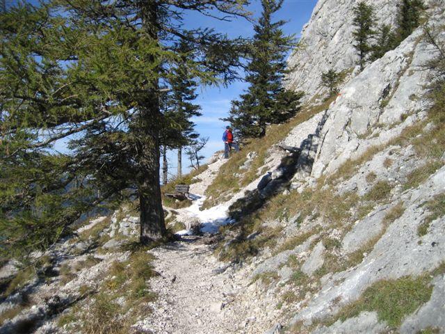 Foto: Alpinfreunde / Wandertour / Schoberstein, 1037m / 17.01.2007 01:21:33