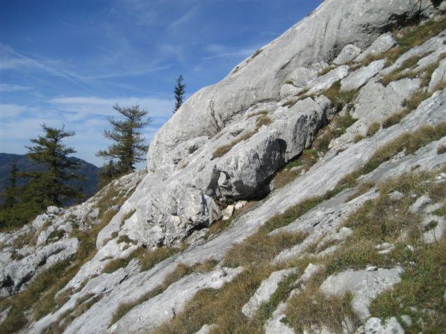 Foto: Alpinfreunde / Wandertour / Schoberstein, 1037m / 17.01.2007 01:21:55