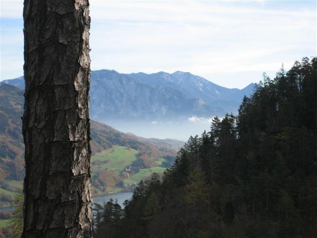 Foto: Jogal / Wander Tour / Von St. Lorenz auf die Drachenwand / 17.01.2007 01:14:52