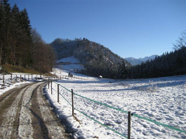 Foto: Jogal / Wander Tour / Rundwanderung über die Hochsteinalm und auf den Lärlkogel / 17.01.2007 01:10:07