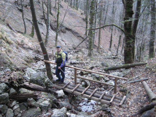 Foto: Jogal / Wander Tour / Rundwanderung über die Hochsteinalm und auf den Lärlkogel / 17.01.2007 01:11:05