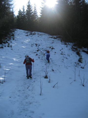 Foto: Alpinfreunde / Wandertour / Steineck / 13.03.2007 20:05:14