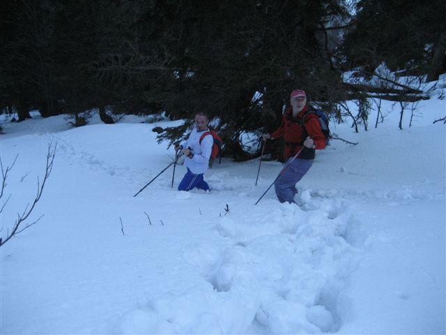 Foto: Alpinfreunde / Wandertour / Steineck / 13.03.2007 20:06:47