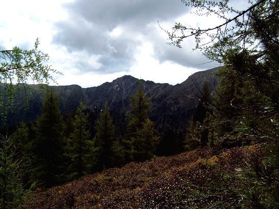 Foto: Andreas Koller / Wandertour / Große Turracher Gipfel-Runde (2441 m) / Die Bretthöhe-Nordflanke (2320 m) / 09.05.2007 21:08:11