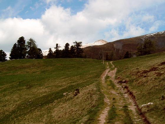 Foto: Andreas Koller / Wander Tour / Große Turracher Gipfel-Runde (2441 m) / Noch immer weit auf den Eisenhut / 09.05.2007 21:08:29