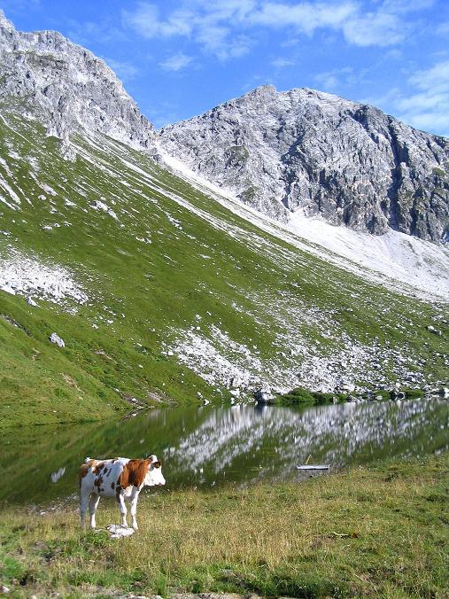 Foto: Andreas Koller / Wander Tour / Aus dem Riedingtal im Lungau auf das Mosermandl (2680 m) / Zaunersee und Rothorn (2520 m) / 17.08.2007 10:35:43