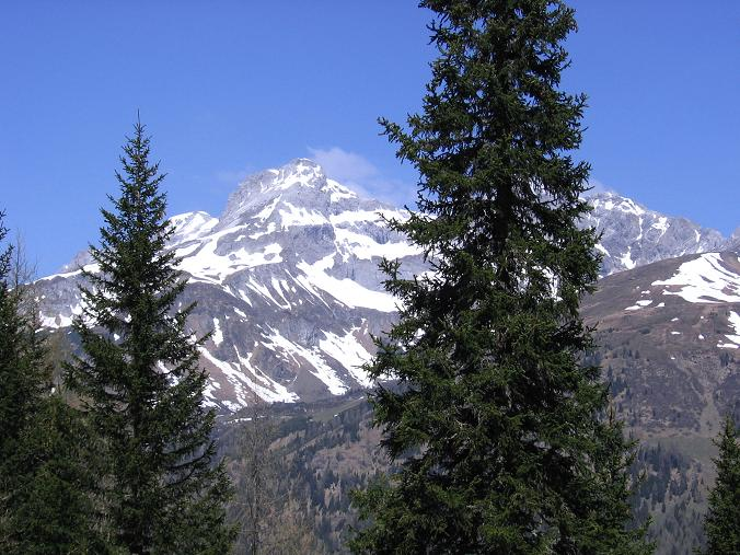 Foto: Andreas Koller / Wander Tour / Aus dem Riedingtal im Lungau auf das Mosermandl (2680 m) / Mosermandl aus dem Riedingtal / 30.04.2007 03:40:24