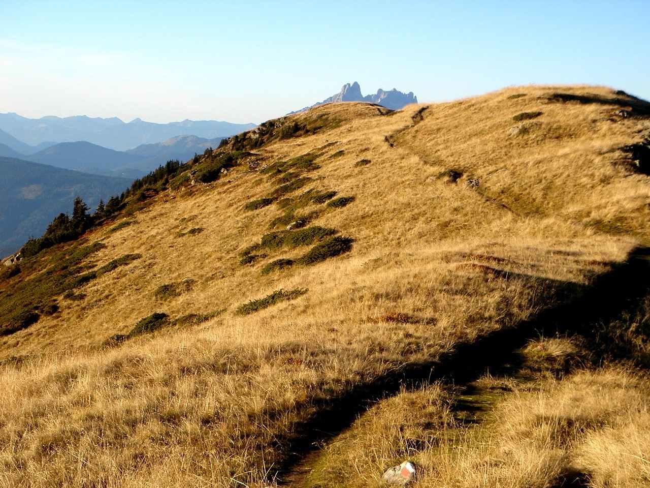 Foto: Manfred Karl / Wander Tour / Gipfelrunde von der Reiteralm auf den Schober (2133m) / Wiesenwandern von der Gasselhöhe zum Ruppeteck / 19.06.2007 05:55:27