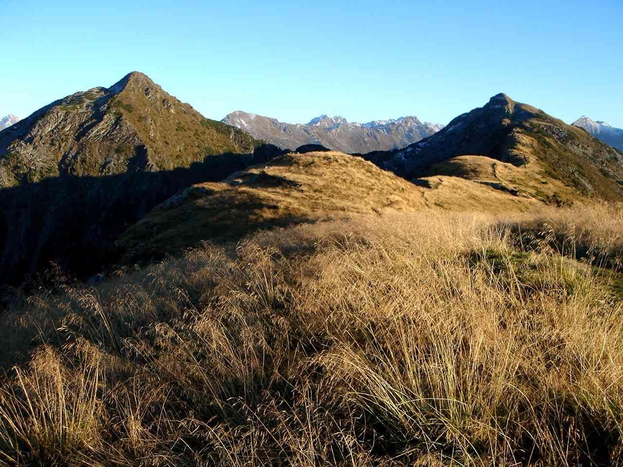 Foto: Manfred Karl / Wander Tour / Gipfelrunde von der Reiteralm auf den Schober (2133m) / Rückblick zum Schober und Ruppeteck / 19.06.2007 05:54:27