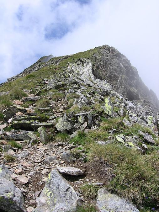 Foto: Andreas Koller / Wander Tour / Vom Prebersee auf das Roteck (2742 m) / Roteck S-Grat / 09.05.2007 21:59:09