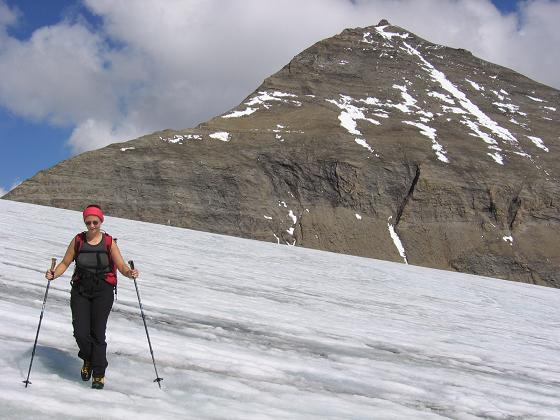 Foto: Andreas Koller / Wandertour / Oberwalderhütte und Überschreitung des Mittleren Bärenkopfes (3358 m) / Am Südlichen Bockkar Kees gegen Fuscherkarkopf (3331 m) / 28.05.2007 23:52:56
