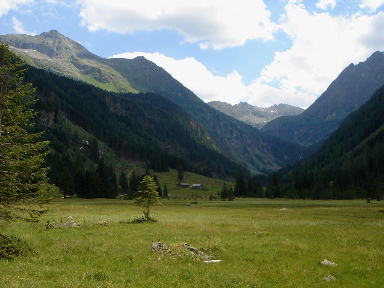 Foto: Manfred Karl / Wander Tour / Hochwildstelle-Überschreitung / Im Tal hinter dem Riesachsee / 15.06.2007 23:12:46