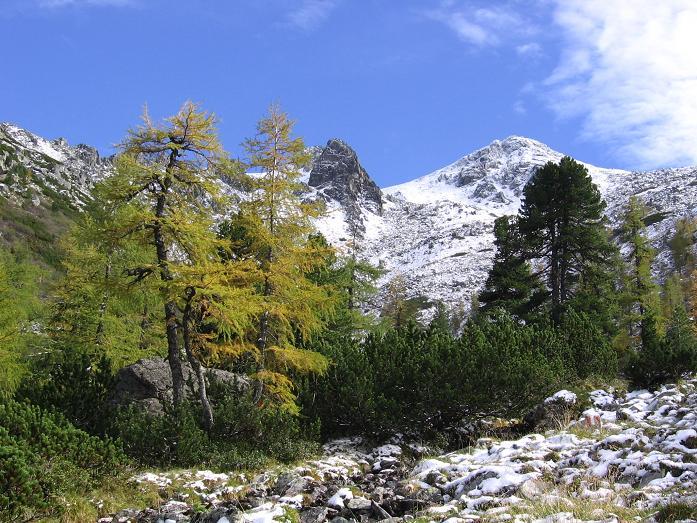 Foto: Andreas Koller / Wandertour / Von der Rottenmanner Hütte über den Dreisteckengrat zur Edelraute Hütte (2448 m) / Hochaide im hrebstlichen Kleid / 03.06.2007 20:44:30