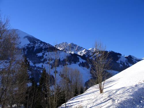 Foto: vince 51 / Wander Tour / Schneeschuhwanderung auf den Schönkahler / Der Ponten / 29.12.2006 22:50:24