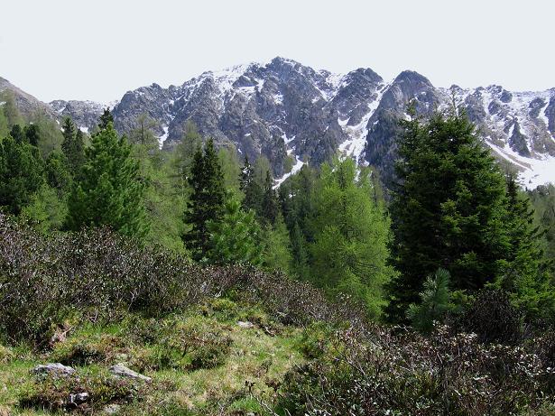 Foto: Andreas Koller / Wander Tour / Lattersteig und sechs Gipfel (2320 m) / Die Bretthöhe-Nordflanke / 22.04.2007 22:16:38