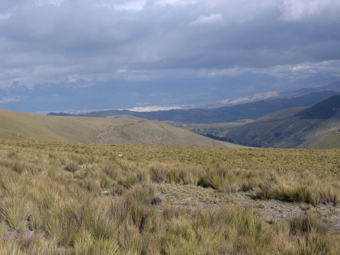 Foto: Andreas Koller / Wander Tour / Wandertour in große Höhen im Chimborazo-Massiv (4463 m) / Blick nach Riobamba / 11.05.2007 01:01:09