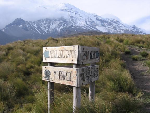 Foto: Andreas Koller / Wander Tour / Wandertour in große Höhen im Chimborazo-Massiv (4463 m) / Trail-Verzweigung mit Chimborazo (6310 m) / 11.05.2007 01:02:19