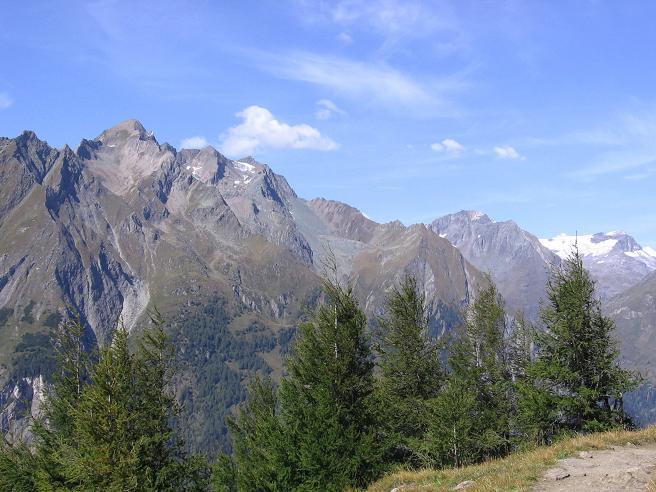 Foto: Andreas Koller / Wandertour / Ins Herz der Granatspitzgruppe (3232 m) / Blick von der Edelweißwiese in die Venedigergruppe / 09.05.2007 00:31:41