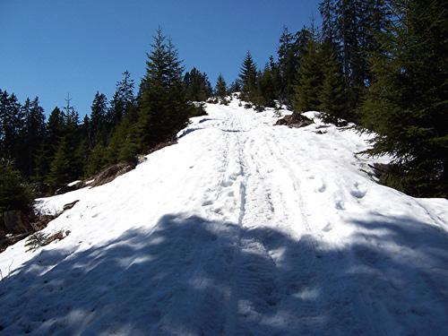 Foto: vince 51 / Wander Tour / Von Elbigenalp zur Bernhardseck Hütte / 29.12.2006 23:08:56