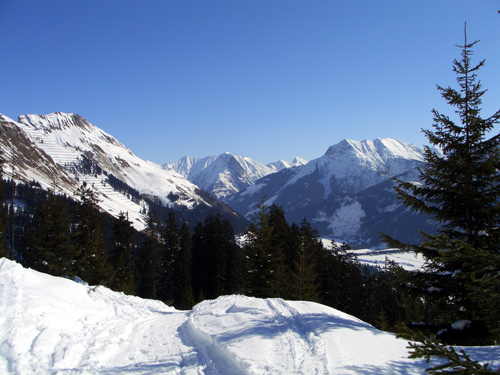 Foto: vince 51 / Wander Tour / Von Elbigenalp zur Bernhardseck Hütte / 29.12.2006 23:08:10
