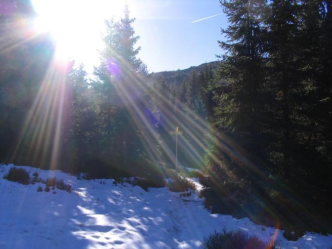 Foto: Andreas Koller / Wandertour / Vom Klippitztörl über die Große Saualpe (2079 m) / Im Aufstieg vom Klippitztörl zum Geierkogel / 26.04.2007 21:41:51