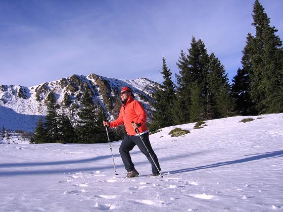Foto: Andreas Koller / Wander Tour / Drei Gipfel über dem steirischen Bärntal (2386 m) / Im Aufstieg Richtung Gaaler Törl / 06.05.2007 14:53:29