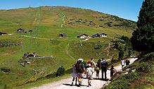 Foto: Andreas Koller / Wander Tour / Familientour auf das Rittner Horn (2261 m) / Einfache Wanderung auf das Rittner Horn / 12.01.2007 22:37:38