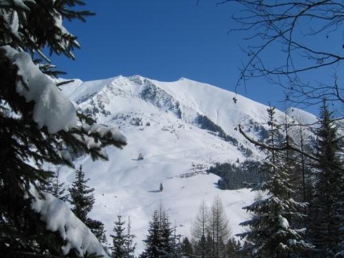 Foto: Christian Suschegg / Skitour / Kreuzköpfl (2094m) / Bergimpressionen beim Aufstieg im Wald / 03.01.2007 12:44:11