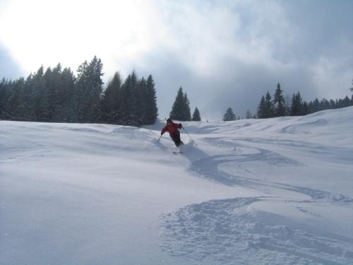 Foto: Christian Suschegg / Ski Tour / Tagkopf (2085m) / Abfahrt im Pulverschnee / 04.01.2007 14:01:30