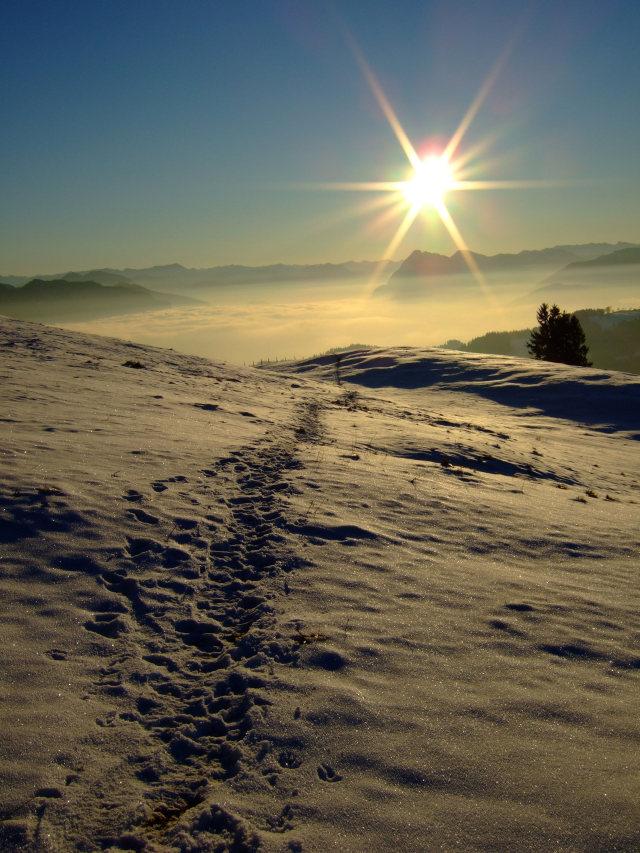 Foto: Johanna Kagerer / Wandertour / Von Wildbichl auf die Karspitze / 10.01.2007 11:42:27