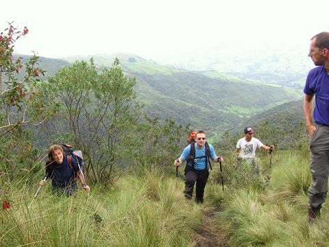 Foto: Andreas Koller / Wander Tour / Durch Regenwald auf den Pasochoa (4200 m) / Im steilen Gras auf 3500 m / 09.01.2007 02:19:22
