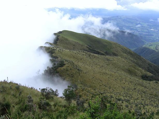 Foto: Andreas Koller / Wander Tour / Durch Regenwald auf den Pasochoa (4200 m) / Auf dem Paramo / 09.01.2007 02:18:46