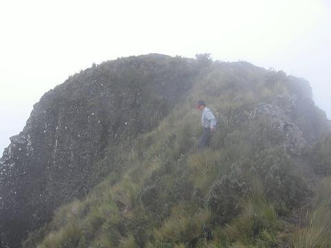 Foto: Andreas Koller / Wander Tour / Durch Regenwald auf den Pasochoa (4200 m) / Abstieg vom Pasochoa / 09.01.2007 02:17:10