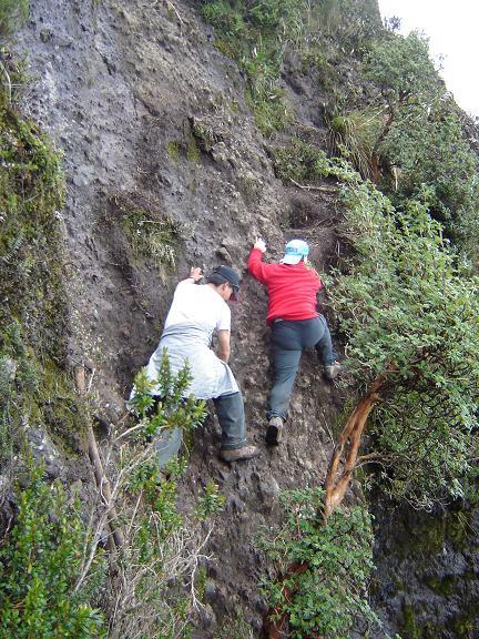 Foto: Andreas Koller / Wander Tour / Durch Regenwald auf den Pasochoa (4200 m) / Die schwierigste Passage: Kletterei im II. Schwierigkeitsgrad / 19.02.2007 00:10:01