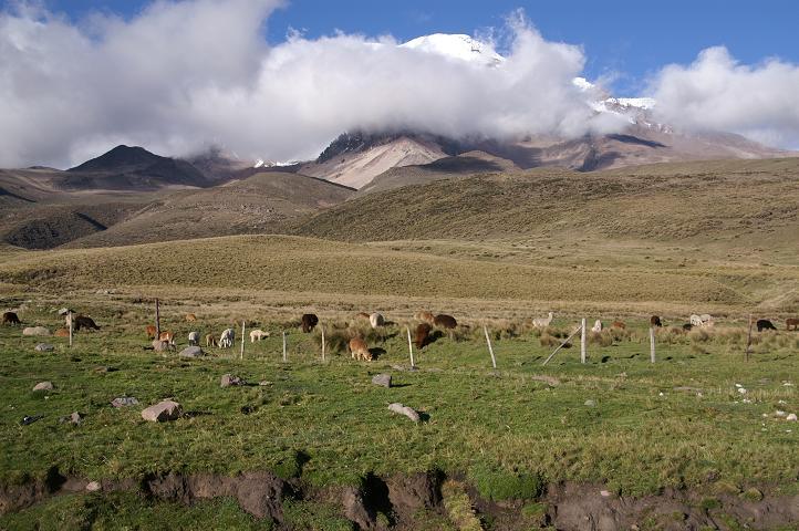 Foto: Andreas Koller / Wander Tour / Chimborazo - König der Anden Ecuadors (6310 m) / Über der Hochfläche taucht der Chimborazo auf / 22.04.2007 20:47:27
