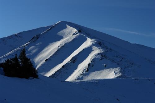 Foto: Christian Suschegg / Schneeschuh Tour / Winter-Gratwanderung zwischen Großsölktal und Donnersbachwald / Aufstieg zum Kleinen Bärneck / 08.01.2007 17:18:34